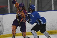NCAA Hockey - Post University 3 vs. Assumption College 2 - Photo (41)