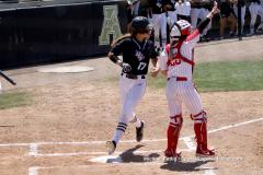 Gallery- NCAA Softball- UCF 4 vs UH 1
