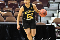 NCAA Women's Basketball AAC Tournament 1st Round - #7 Tulsa 61 vs. #10 Wichita State 50 (22)