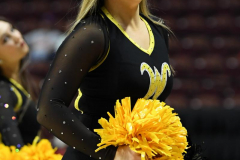 NCAA Women's Basketball AAC Tournament 1st Round - #7 Tulsa 61 vs. #10 Wichita State 50 (35)