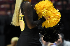 NCAA Women's Basketball AAC Tournament 1st Round - #7 Tulsa 61 vs. #10 Wichita State 50 (50)