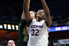 NCAA Women's Basketball AAC Tournament Semifinals - #1 UConn 81 vs. #5 USF 45 (126)