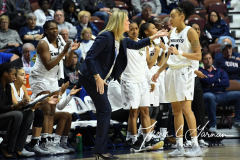 NCAA Women's Basketball AAC Tournament Semifinals - #2 UCF 66 vs. #3 Cincinnati 58 (42)