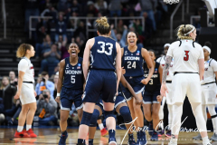 NCAA Women's Basketball Albany Regional Finals - #1 Louisville 73 vs. #2 UConn 80 (132)