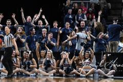 NCAA Women's Basketball Albany Regional Finals - #1 Louisville 73 vs. #2 UConn 80 (135)