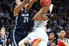NCAA Women's Basketball Albany Regional Finals - #1 Louisville 73 vs. #2 UConn 80 (150)
