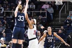 NCAA Women's Basketball Albany Regional Finals - #1 Louisville 73 vs. #2 UConn 80 (97)