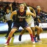 NCAA Women's Basketball - CCSU 39 vs. Robert Morris 62 - Photo (18)