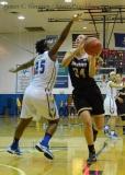 NCAA Women's Basketball - CCSU 53 vs. Bryant 52 - Photo (39)