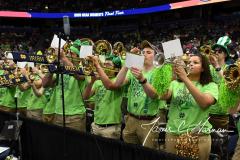 NCAA Women's Basketball Championship - Baylor 82 vs. Notre Dame 81 (14)
