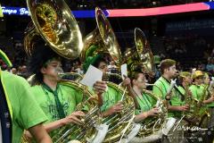 NCAA Women's Basketball Championship - Baylor 82 vs. Notre Dame 81 (17)