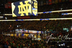 NCAA Women's Basketball Championship - Baylor 82 vs. Notre Dame 81 (32)
