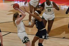 NCAA Women's Basketball Championship - Baylor 82 vs. Notre Dame 81 (40)