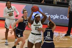 NCAA Women's Basketball Championship - Baylor 82 vs. Notre Dame 81 (53)