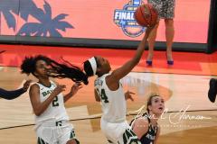 NCAA Women's Basketball Championship - Baylor 82 vs. Notre Dame 81 (60)