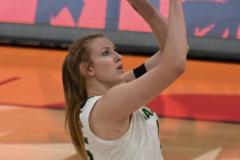 NCAA Women's Basketball Championship - Baylor 82 vs. Notre Dame 81 (72)