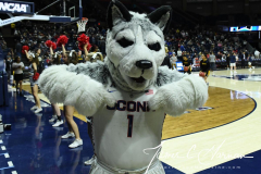 NCAA Women's Basketball Championship First Round - #2 UConn 110 vs. #15 Towson 61 (5)