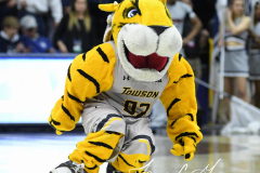NCAA Women's Basketball Championship First Round - #2 UConn 110 vs. #15 Towson 61 (72)