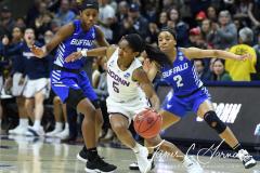 NCAA Women's Basketball Championship Second Round - #2 UConn 84 vs. #10 Buffalo 72 (175)