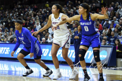 NCAA Women's Basketball Championship Second Round - #2 UConn 84 vs. #10 Buffalo 72 (79)