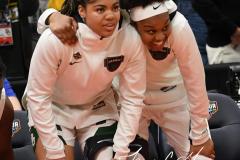 NCAA Women's Basketball FInal Four National Semi-Finals - Baylor 72 vs Oregon 67 (113)