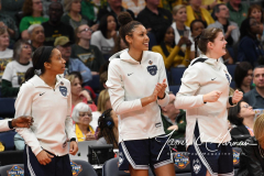 NCAA Women's Basketball FInal Four National Semi-Finals - Notre Dame 81 vs UConn 76 (43)