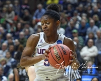 NCAA Women's Basketball 1st Round - UConn 140 vs. St Francis 52 (88)