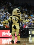 Gallery- NCAA Womens Basketball- UCF 37 vs UConn 55