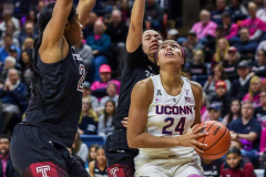 Uconn vs Temple-32