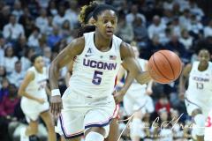 NCAA Women's Basketball - UConn 83 vs. Houston 61 (91)
