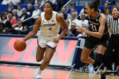 NCAA Women's Basketball - UConn 97 vs. South Carolina 79 (25)