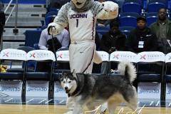 NCAA Women's Basketball - UConn 97 vs. South Carolina 79 (7)