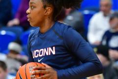 NCAA Women's Basketball; UConn vs. Seton Hall - Photo # 024