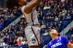 NCAA Women's Basketball; UConn vs. Seton Hall - Photo # 162