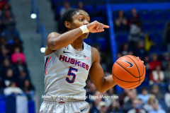 NCAA Women's Basketball; UConn vs. Seton Hall - Photo # 202
