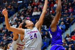 NCAA Women's Basketball; UConn vs. Seton Hall - Photo # 300