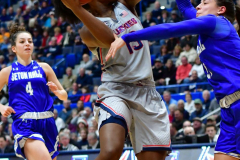 NCAA Women's Basketball; UConn vs. Seton Hall - Photo # 310