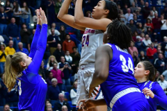 NCAA Women's Basketball; UConn vs. Seton Hall - Photo # 354