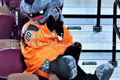 Gallery NLL Lacrosse NE Black Wolves 5 vs. Buffalo Bandits 15