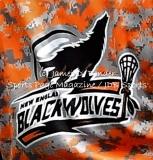Gallery NLL Lacrosse: NE BLack Wolves 7 vs. Buffalo Bandits 20