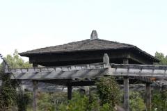 Elizabeth Park 184
