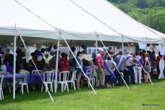 2018 Relay For Life of Greater Waterbury - Photo # A (148)