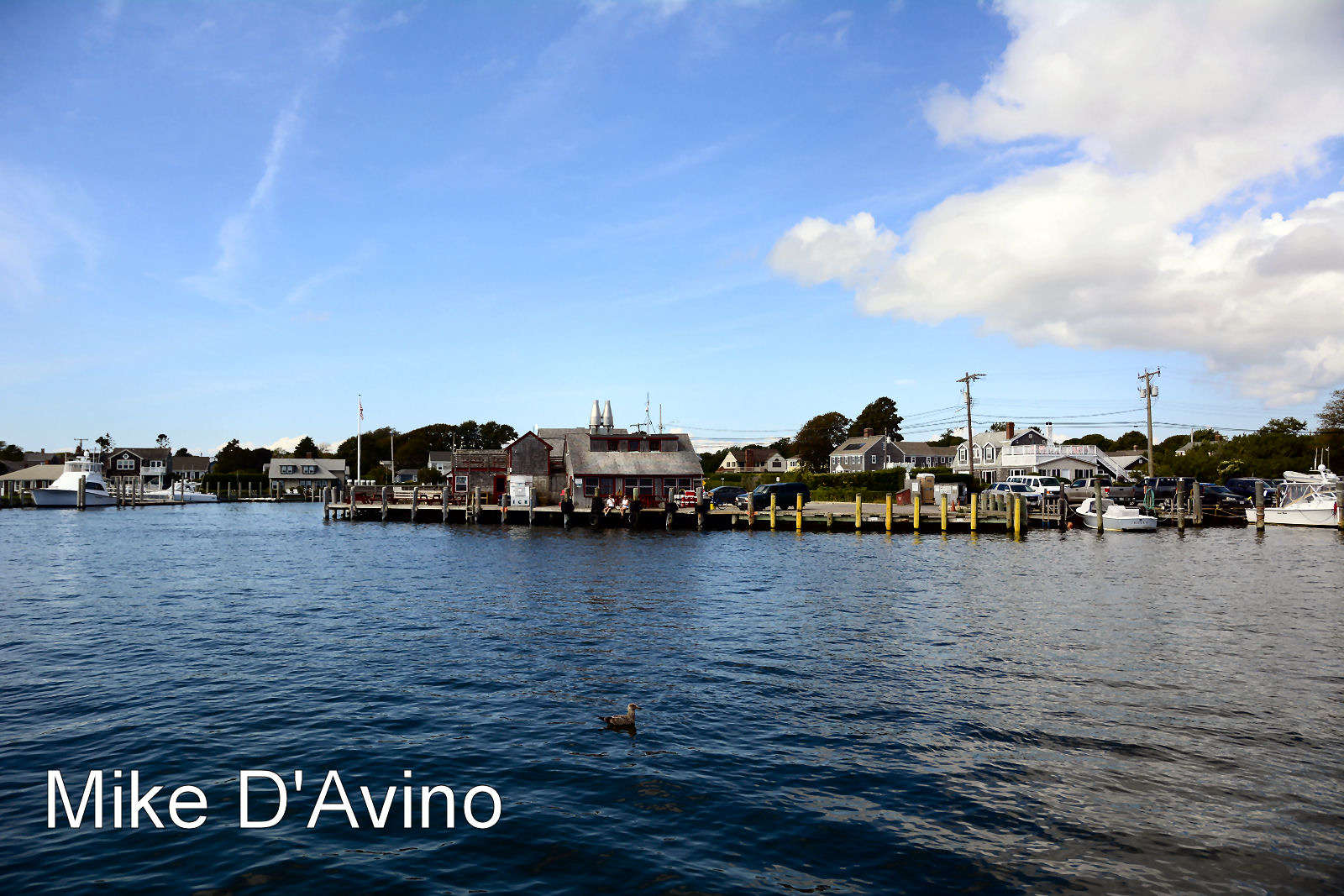 Las Vegas 94 >> Gallery Non-Sports: An Afternoon in Falmouth, Cape Cod, MA ...
