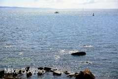 Falmouth, Cape Cod, MA (25)