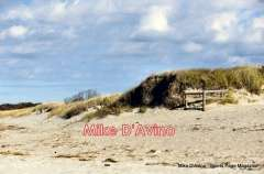 Cape Cod Route 6A - Orleans, Brewster and Dennis - Photo # (12)