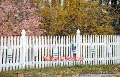 Cape Cod Route 6A - Orleans, Brewster and Dennis - Photo # (156)