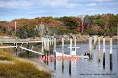 Cape Cod Route 6A - Orleans, Brewster and Dennis - Photo # (5)