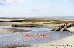 Cape Cod Route 6A - Orleans, Brewster and Dennis - Photo # (68)