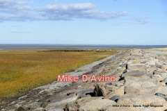 Cape Cod Route 6A - Orleans, Brewster and Dennis - Photo # (72)