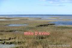 Cape Cod Route 6A - Orleans, Brewster and Dennis - Photo # (73)